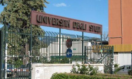 Università/ Crediti formativi: deroga straordinaria per partecipare al bando borse di studio