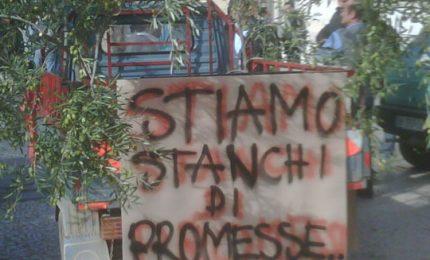 """Il 2016? """"Annus horribilis per l'agricoltura siciliana"""""""
