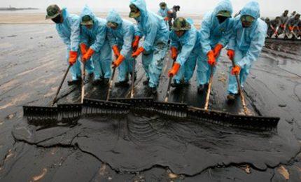 Petrolio in Basilicata: retroscena inquietanti sull'inquinamento. Ora Renzi ha paura del referendum del 17 Aprile