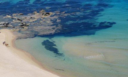 """Vanadia: """"Il Resort di Torre Salsa? Va realizzato al di fuori del Sito d'Interesse Comunitario"""""""