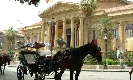 Palermo, l'ultima dell'assessore Catania: niente carrozze e cavalli dai Quattro Canti alla Cattedrale