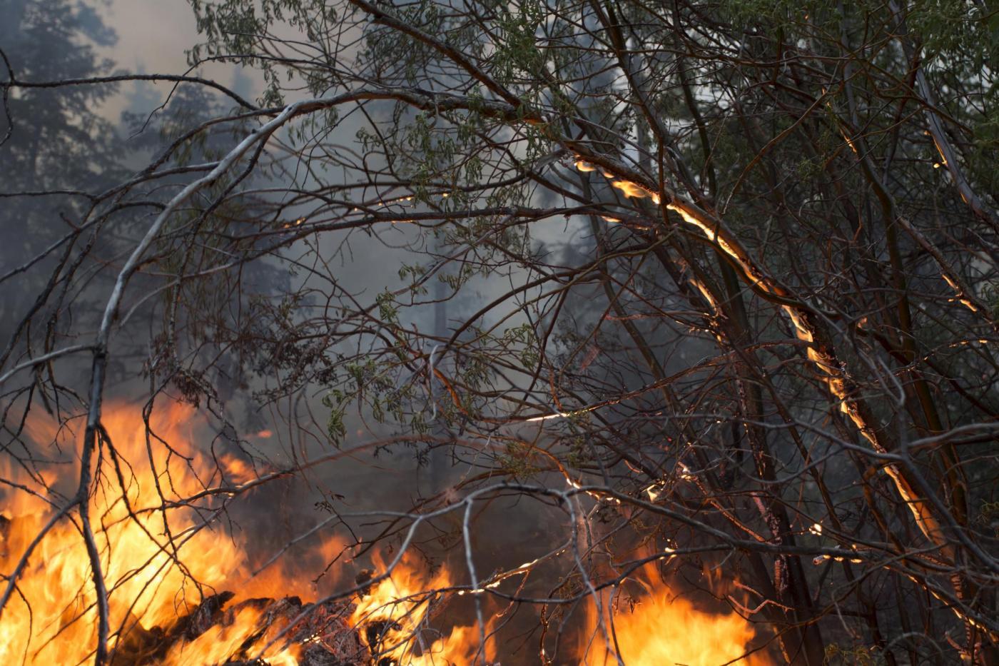 """Incendi: """"Ancora ferma la campagna prevenzione"""". La Sicilia resta a rischio roghi"""