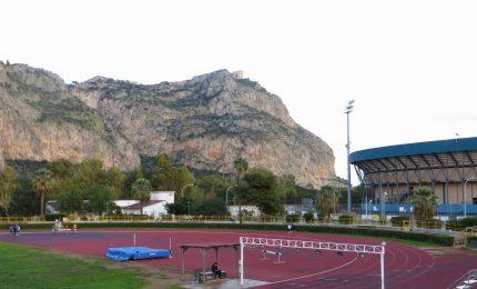 Palermo, è polemica sui concerti di Mika e Negramaro allo Stadio delle Palme