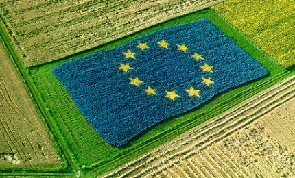 La crisi dell'agricoltura siciliana: ma a che servono e a chi vanno i 5 miliardi di Euro di fondi europei?