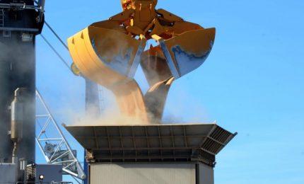 Dopo il grano duro al glifosato e alle micotossine, a Pozzallo è arrivata una nave di grano tenero. Per fare che?