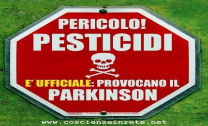 Lo Statuto siciliano ci difende dall'invasione di prodotti avvelenati che arrivano dal resto del mondo