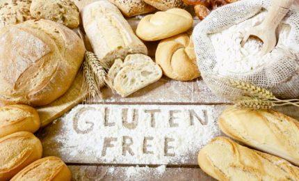 Tutto quello che dobbiamo sapere sul glutine, dalla celiachia alla Gluten sensitivity