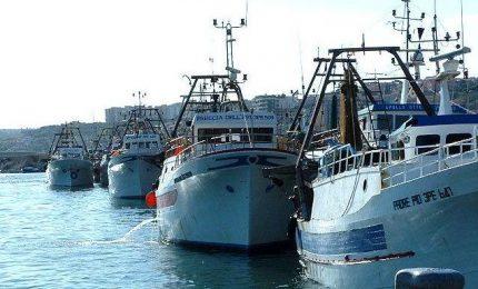 Ragazzi, nemmeno davanti al sequestro di due pescherecci il Governo siciliano dice cose sensate...