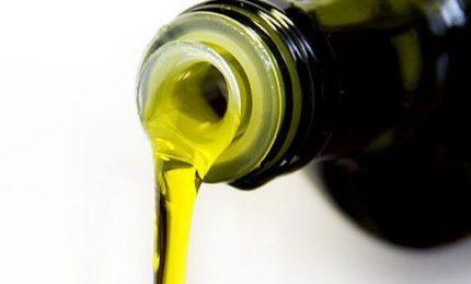 La grande truffa dell'olio d'oliva tunisino sulle nostre tavole? Ecco come non farci truffare