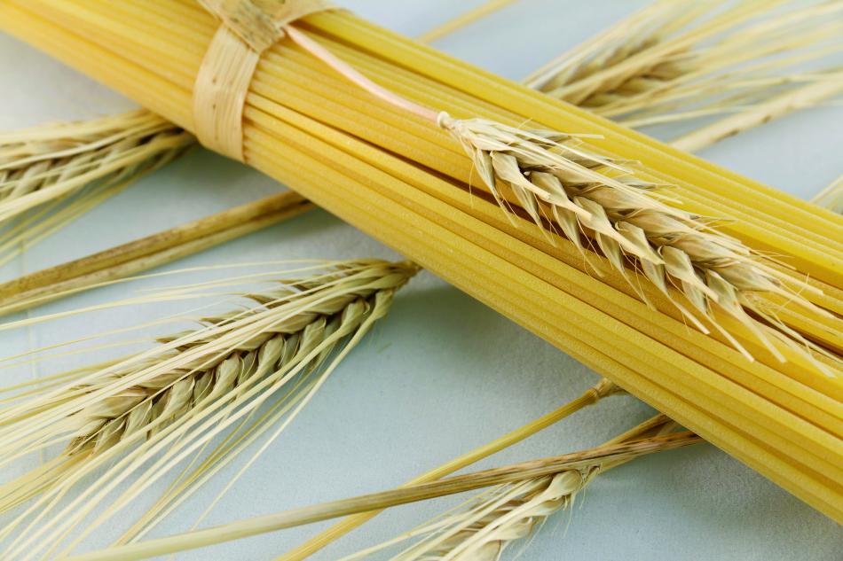 Giù le mani dal grano duro del Sud: la Cun deve essere una e al ...