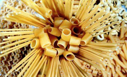 Grano duro, l'ultima follia dell'AGEA: penalizzare il pane per favorire la grande industria della pasta