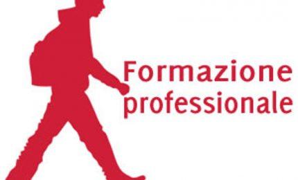 """Formazione: """"Un unico Ente pubblico per riformare il settore"""". Il programma di F. Busalacchi (capitolo 11)"""