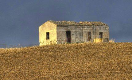 """La denuncia di Cosimo Gioa: """"Le navi cariche di grano tossico continuano ad arrivare e nessuno fa niente"""""""