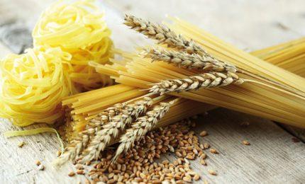 Grano duro estero: I Nuovi Vespri e GranoSalus vincono in Tribunale contro le multinazionali della pasta