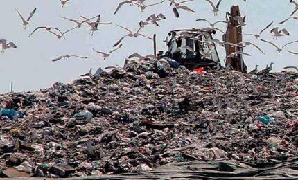 """Claudia Mannino: """"La gestione dei rifiuti in Sicilia è un disastro"""""""