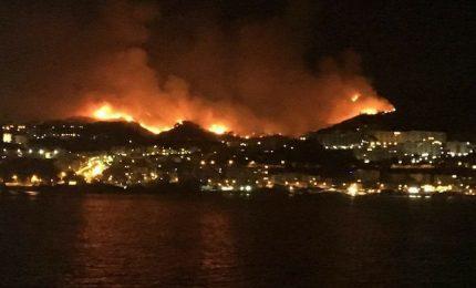 Sicilia in fiamme: la 'strategia del fuoco non si ferma. Chi c'è dietro questi incendi?