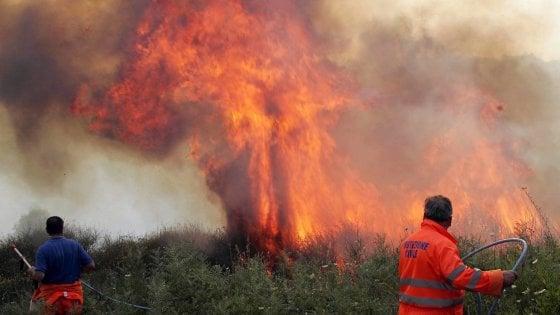 Incendi in Sicilia: il segretario dei Forestali, Grosso, sfida Cracolici in un confronto in Tv