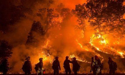 Incendi nei boschi della Sicilia: dietro c'è una regia per gestire appalti & affari?