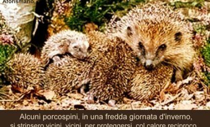 E' ufficiale: il centrodestra di Nello Musumeci è un'armata Brancaleone di porcospini...