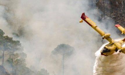 In Val di Susa tutto va a fuoco, ma nessuno attacca i forestali. E nemmeno Chiamparino