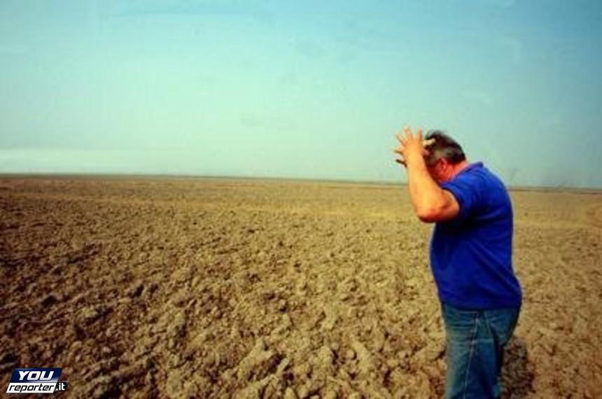 Ritardi nei pagamenti in agricoltura: il PD 'critica' il Governo del quale fa parte…