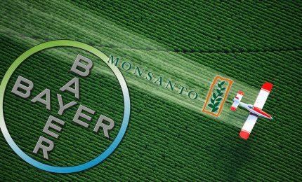 Glifosato: come Monsanto, Bayer e altre multinazionali controllano la UE e le nostre vite