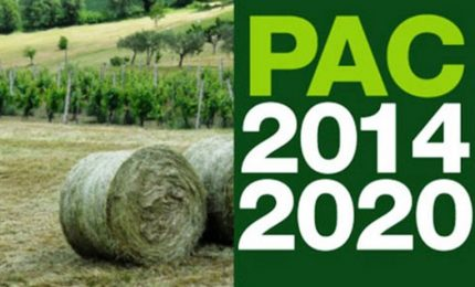 Operai della Forestale: sbloccati 21 milioni di euro di fondi PAC