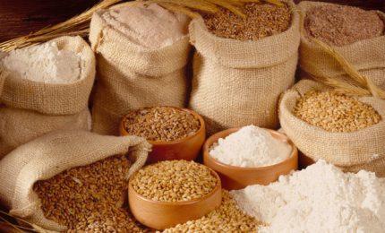 In Sicilia stiamo mangiando pane, pasta e pizze prodotti con il grano duro del Kazakistan?