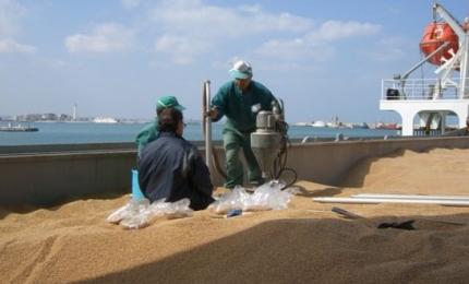 Stop alle navi cariche di grano e all'inquinamento provocato dal trasporto di derrate alimentari