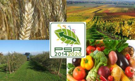 Agricoltori siciliani in ginocchio per i mancati pagamenti dei fondi europei. Situazione esplosiva