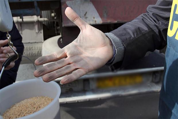 Respinta la nave carica di grano arrivata oggi nel Porto di Pozzallo!