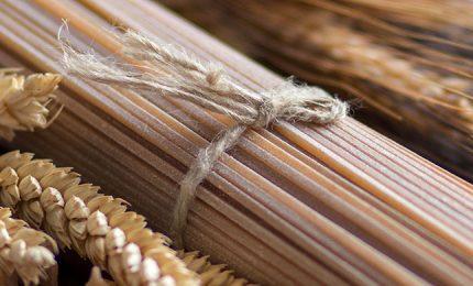 Un piatto di spaghetti di grano Perciasacchi per smentire Farinetti e la UE alla faccia del CETA!