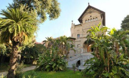 Alberi abbattuti: a Firenze sette dipendenti comunali rinviati a giudizio