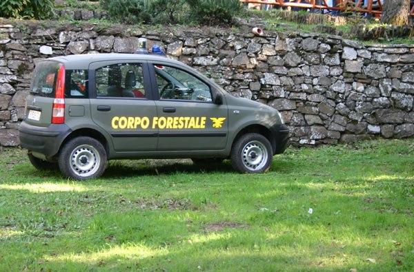 L'ultima trovata politica: 'stabilizzare' i lavoratori del Parco dei Nebrodi nel Corpo Forestale!