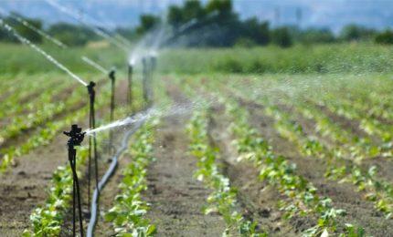 Consorzi di bonifica: la vecchia politica che governa la Sicilia presenterà il conto agli agricoltori?