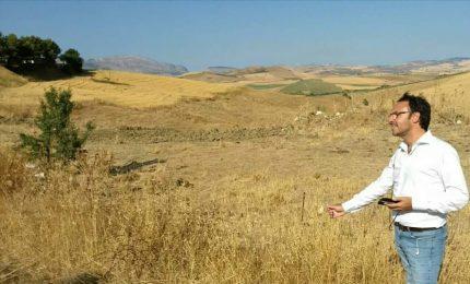 Crisi dell'agricoltura siciliana: che fare? Di Maio possibilista sul CETA, ma per Figuccia va 'bocciato'