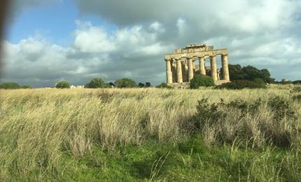 Grani antichi siciliani, ceci e lenticchie nel Parco archeologico di Selinunte