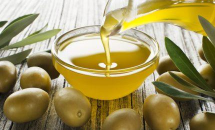 """800 tonnellate di olio d'oliva tunisino 'bio' a dazio zero sbarcate a Palermo. Pottino: """"Così in Sicilia chiudiamo"""""""