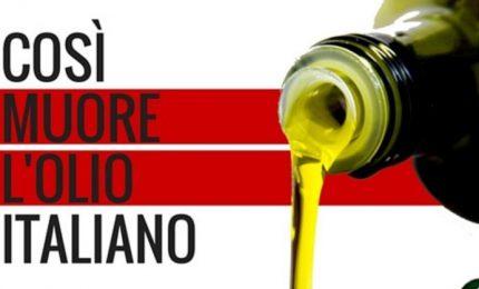 Prima gli italiani? No, Ministro Salvini: prima l'olio d'oliva tunisino...
