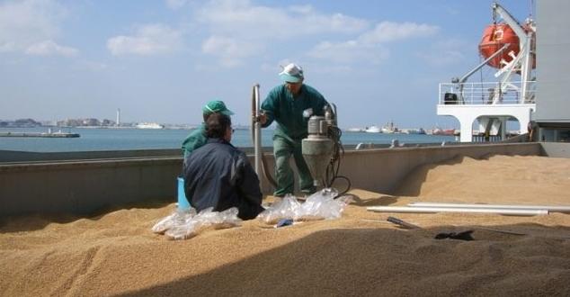Grano & navi/ Scaricati a Bari un milione di quintali. E in Sicilia? Il ruolo dei sindaci