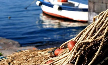 Pesca in Sicilia, Terraeliberazione: basta con i comitati di affari che nascono per andare a 'pesca' dei fondi europei del FEAMP