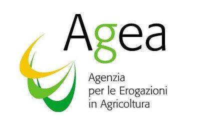 Il TAR su AGEA: i grillini non gioiscano, perché sono al Governo e devono dare risposte agli agricoltori
