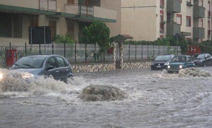 Palermo, hanno eliminato migliaia di alberi e si chiedono perché la città si allaga ad ogni pioggia/ MATTINALE 151