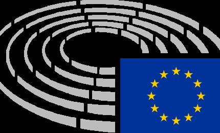 Elezioni europee: chi risiede all'estero non vota per corrispondenza, ma nei consolati