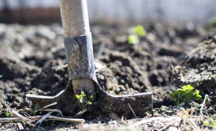 I terreni agricoli del Sud verranno inquinati da diossina e idrocarburi delle industrie del Nord? Salvini sa qualcosa?
