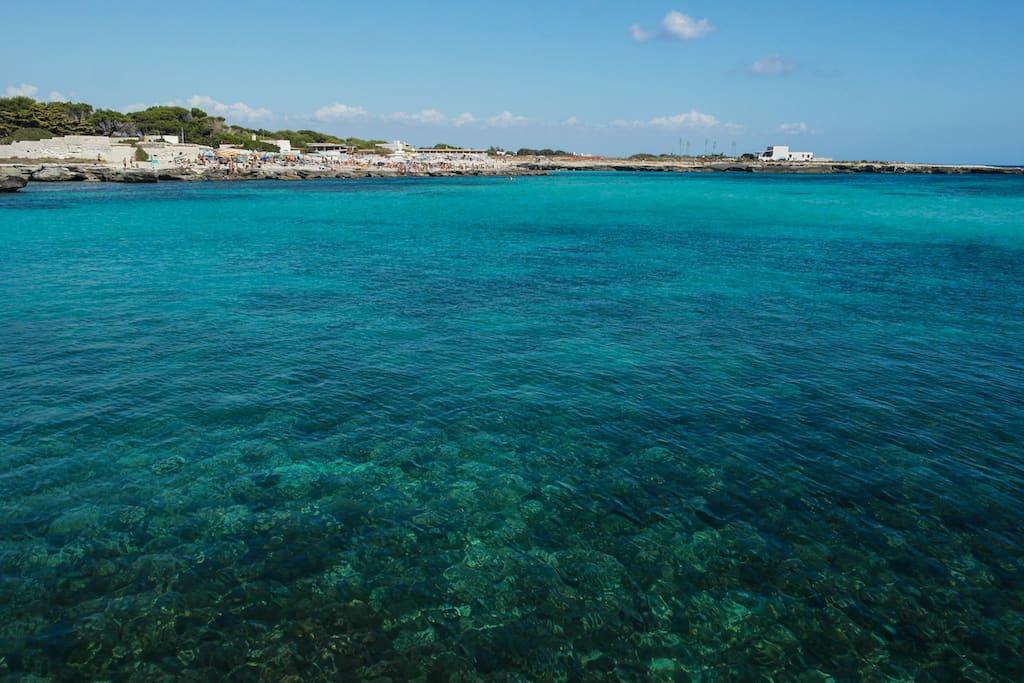 A Favignana acqua inquinata dai rubinetti. E l'eterna storia dei privati che gestiscono l'energia nelle isole