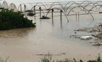 Fondi per i danni del maltempo: esclusi gli agricoltori di Sicilia e Puglia