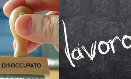 Appello per i disoccupati degli appalti Cmc: ma in Sicilia tutti i disoccupati sono sullo stesso piano