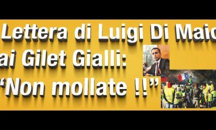 I grillini propongono l'alleanza elettorale ai Gilet gialli, ma hanno approvato una legge liberticida che blocca le manifestazioni di piazza