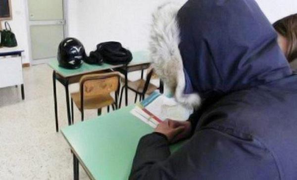 Sicilia, scuole al freddo: anche in questo caso il Governo regionale la portò a malafiura!